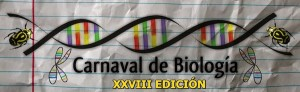 XXVIII-biocarnaval