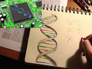 Alfabeto Genético ampliado y bio-ordenadores