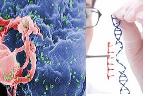 SIDA, células madre e ingeniería genética