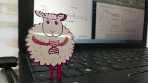 #Photosinthelab oveja genomica
